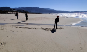 Students at the beach