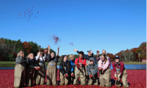 Special needs students in a cranberry field